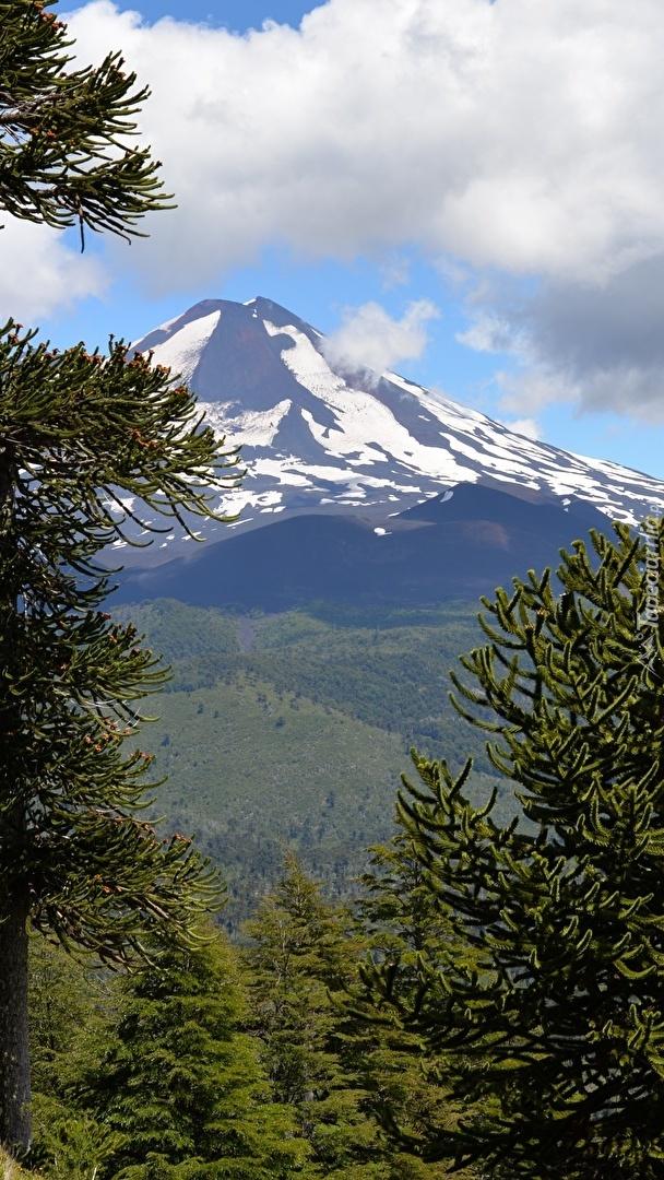 Wulkan Llaima w Chile