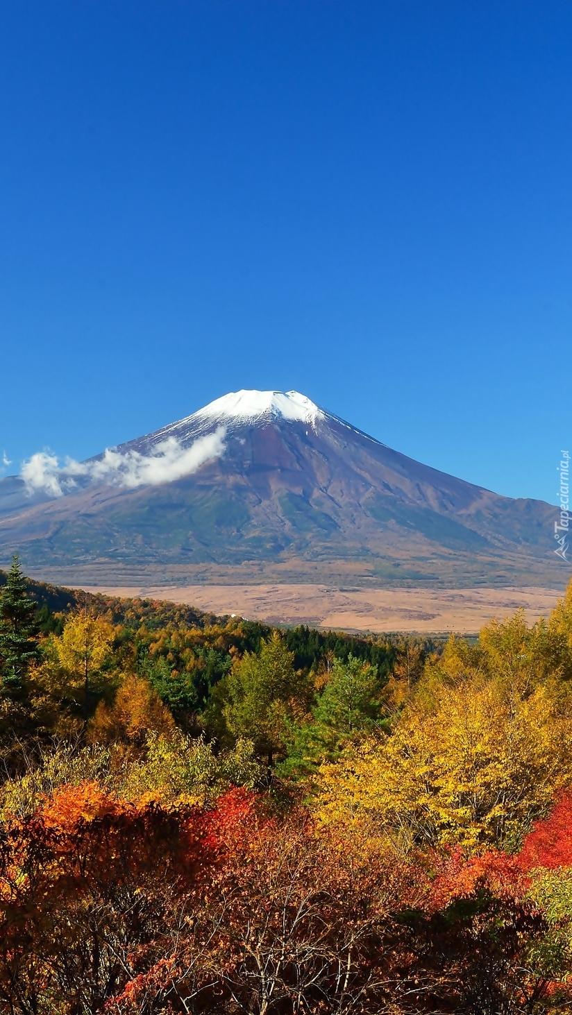 Wulkan w Japonii