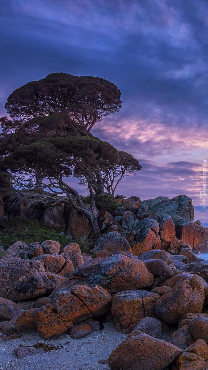 Wybrzeże Shelley Cove w Australii