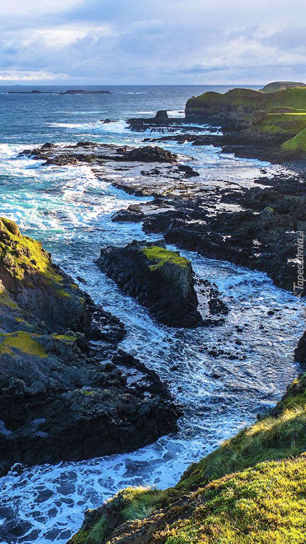 Wybrzeże ze skałami