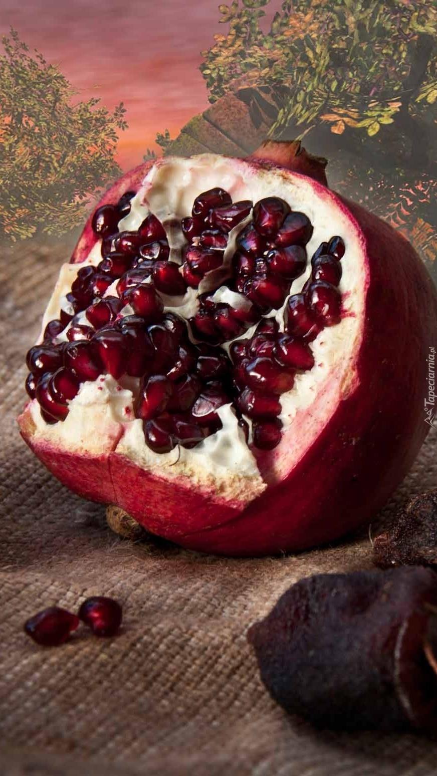 Wybuchowy owoc