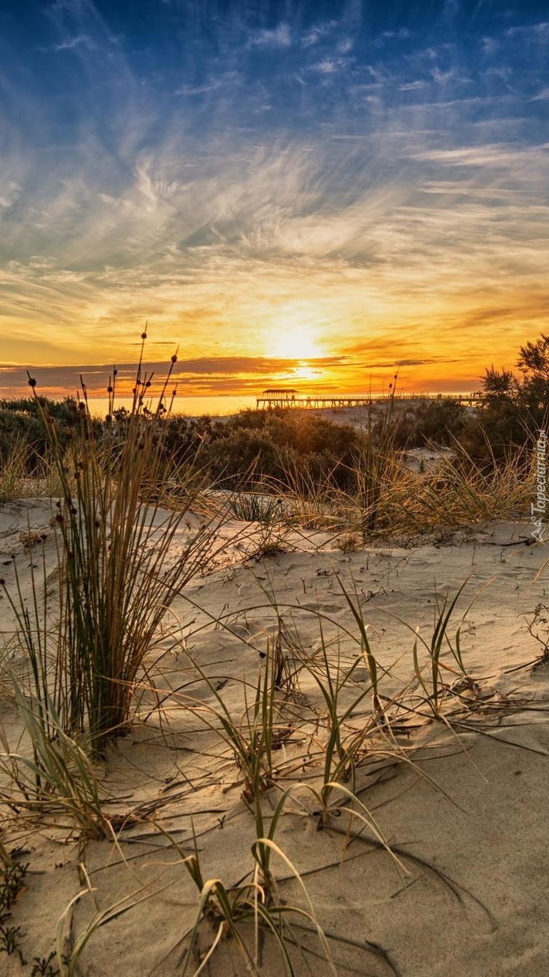 Wydmy o wschodzie słońca
