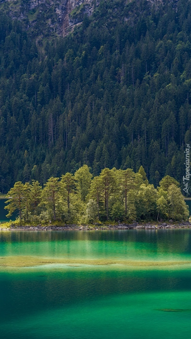 Wysepka z drzewami na jeziorze Eibsee