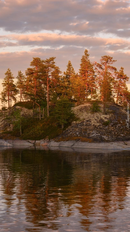 Wysepka z drzewami na jeziorze Ładoga