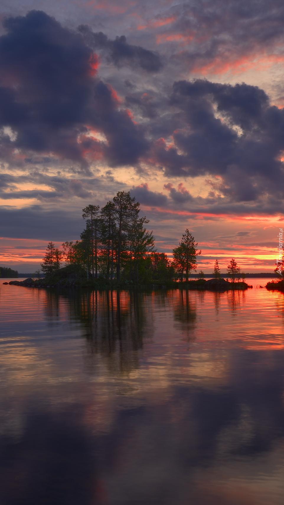 Wysepka z drzewami na środku jeziora