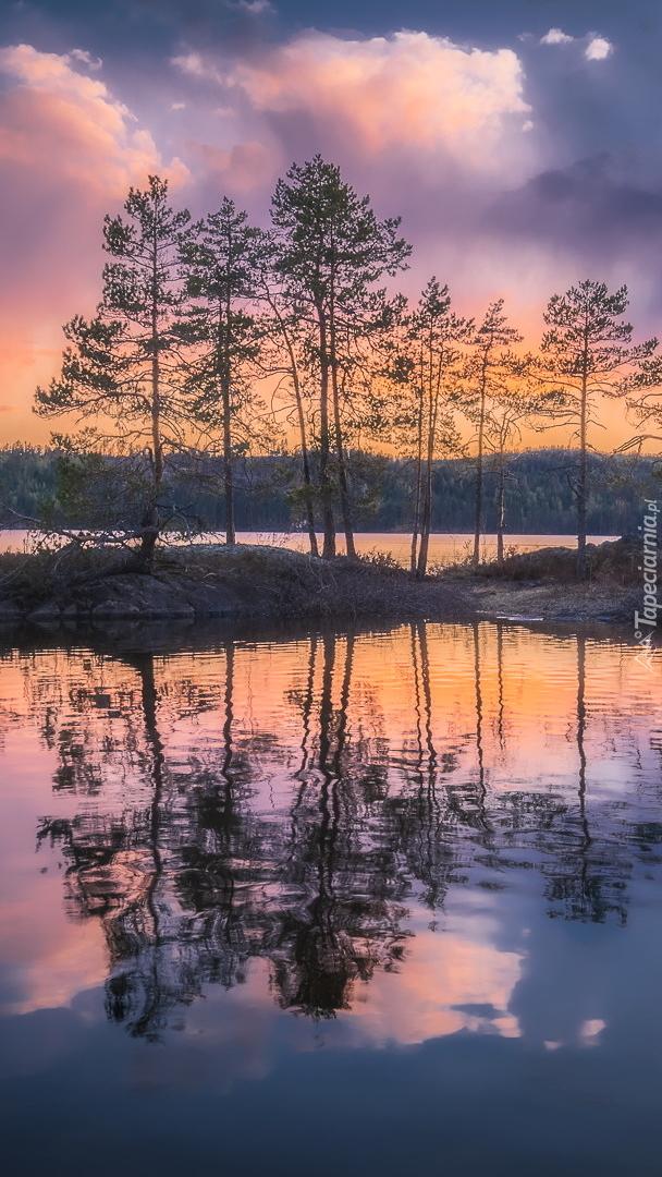 Wysepki z drzewami na jeziorze