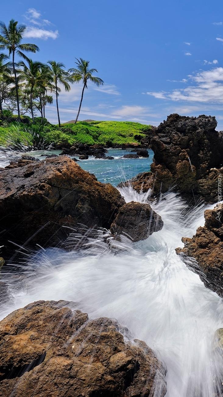 Wyspa Maui na Hawajach
