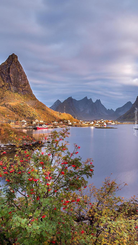 Wyspa Moskenesoya na morzu Norweskim
