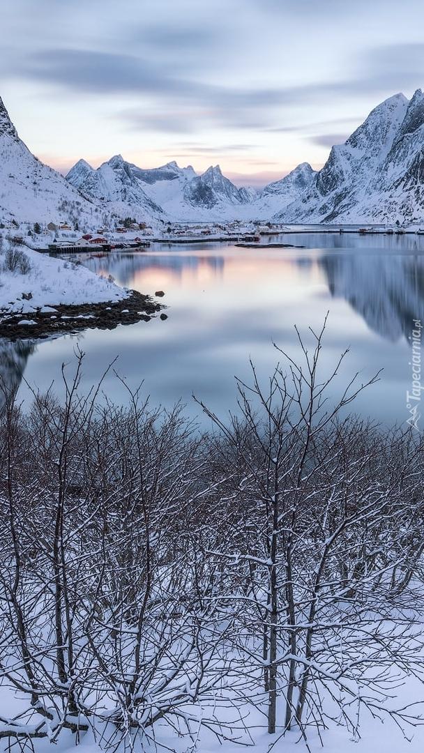 Wyspa Moskenesoya zimową porą
