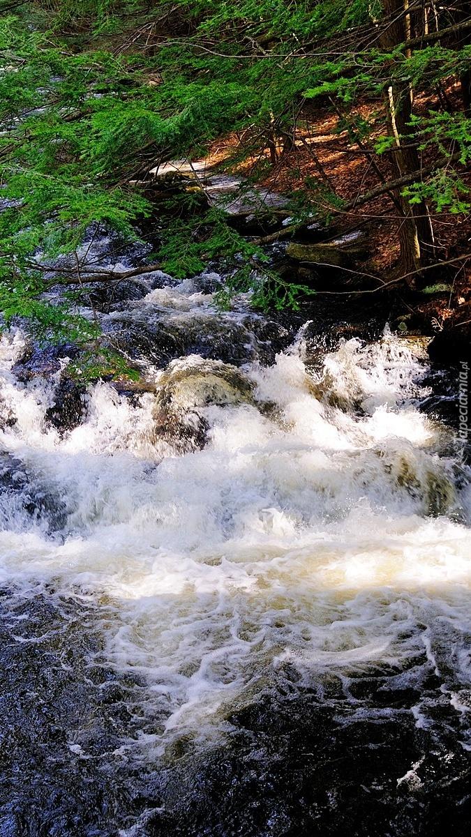 Wzburzona rzeka