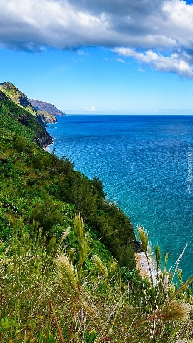 Wzgórza nad morzem