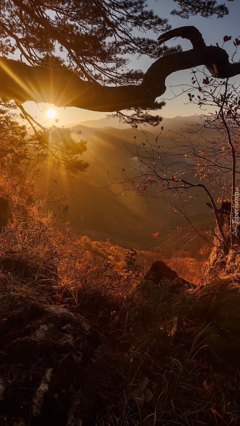Wzgórza w promieniach słońca
