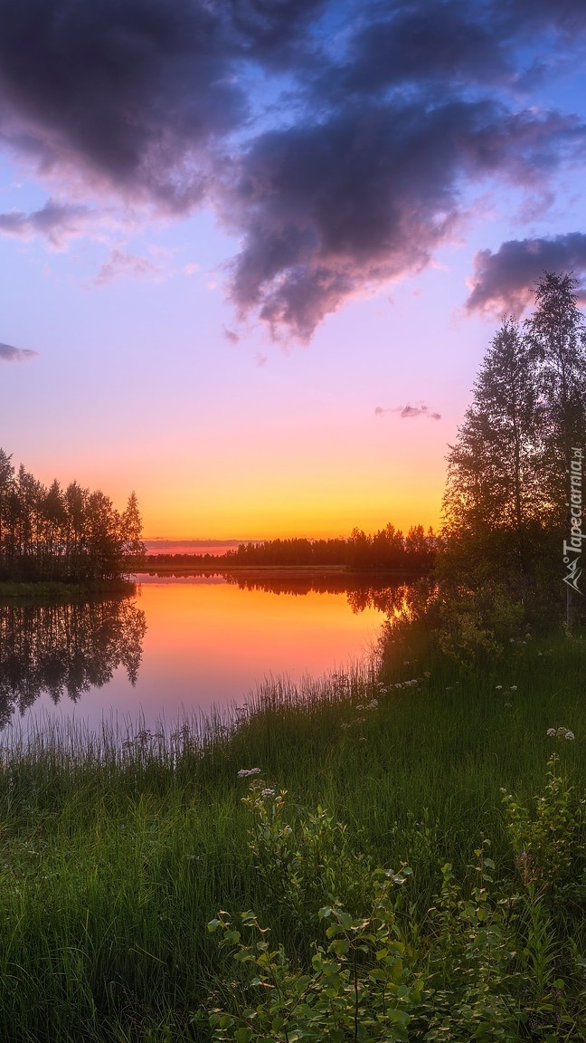 Zachód słońca nad rzeką i drzewami