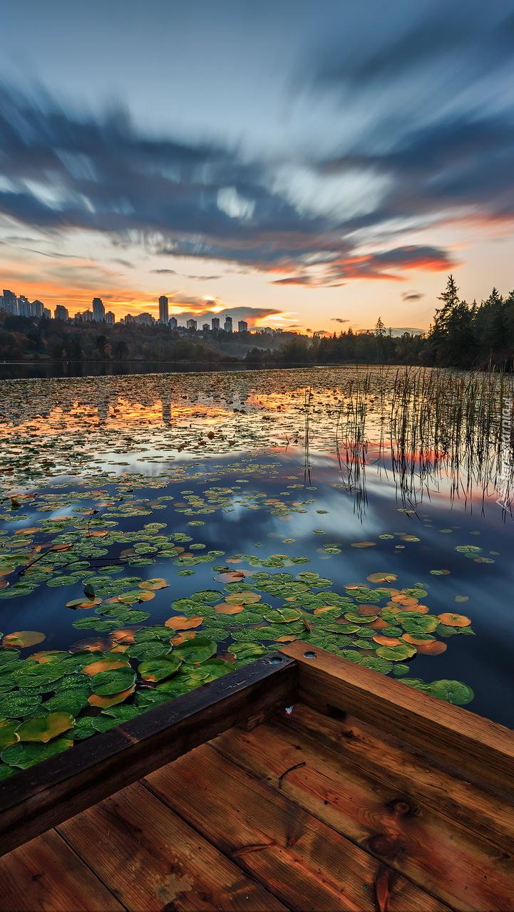 Zachód słońca nad stawem z liliami wodnymi