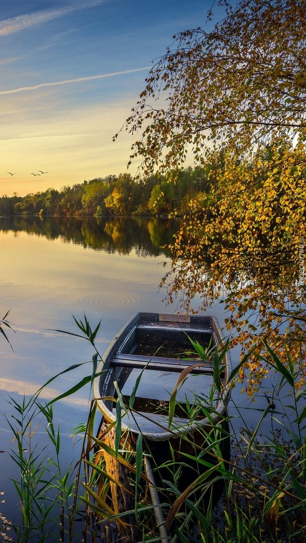 Zacumowana łódka przy brzegu jeziora