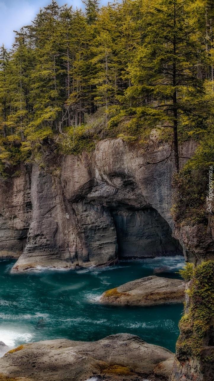 Zalesione skały w Parku Narodowym Olympic