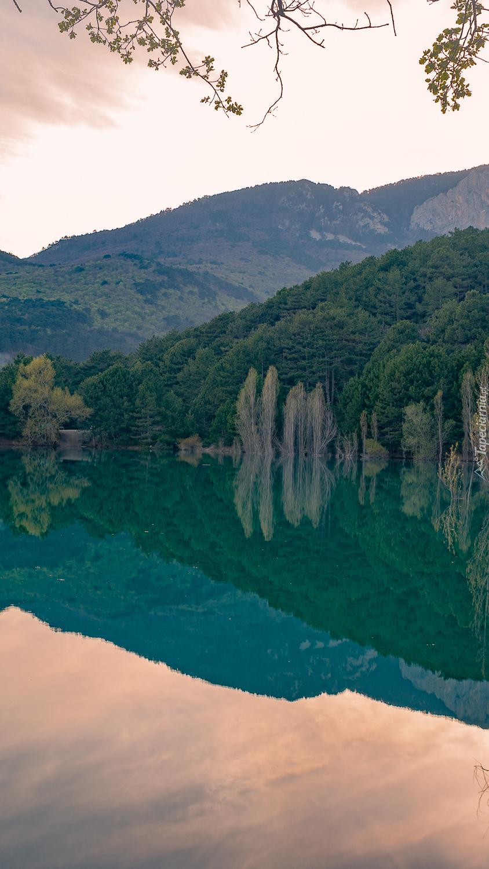 Zalesione wzgórze nad jeziorem