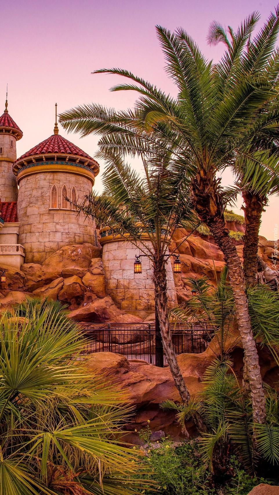 Zamek Disneyland