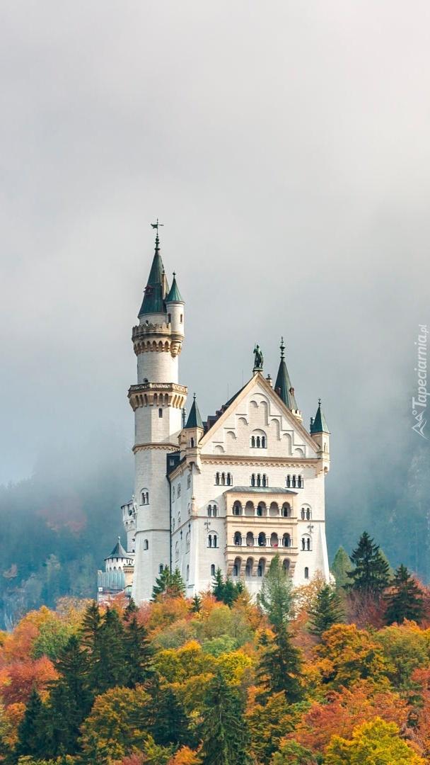 Zamek wśród drzew jesienią