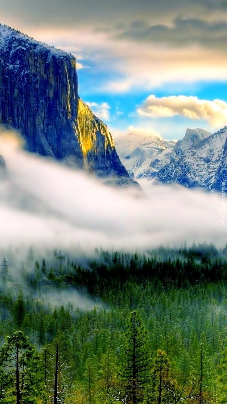 Zamglone góry ponad lasem