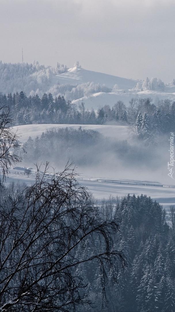 Zamglone wgórza w Szwajcarii