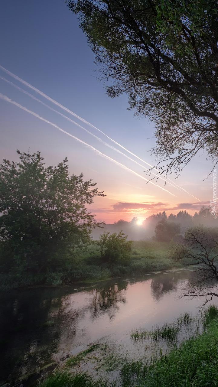 Zamglony poranek nad rzeką