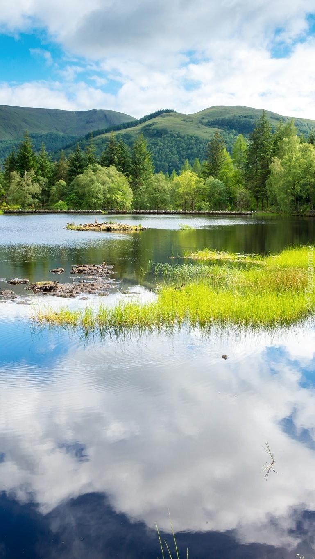 Zarastające jezioro
