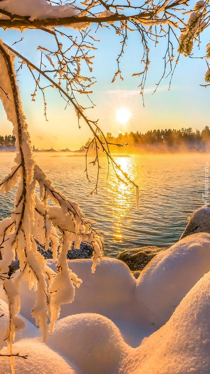 Zaśnieżone gałęzie i kamienie nad jeziorem