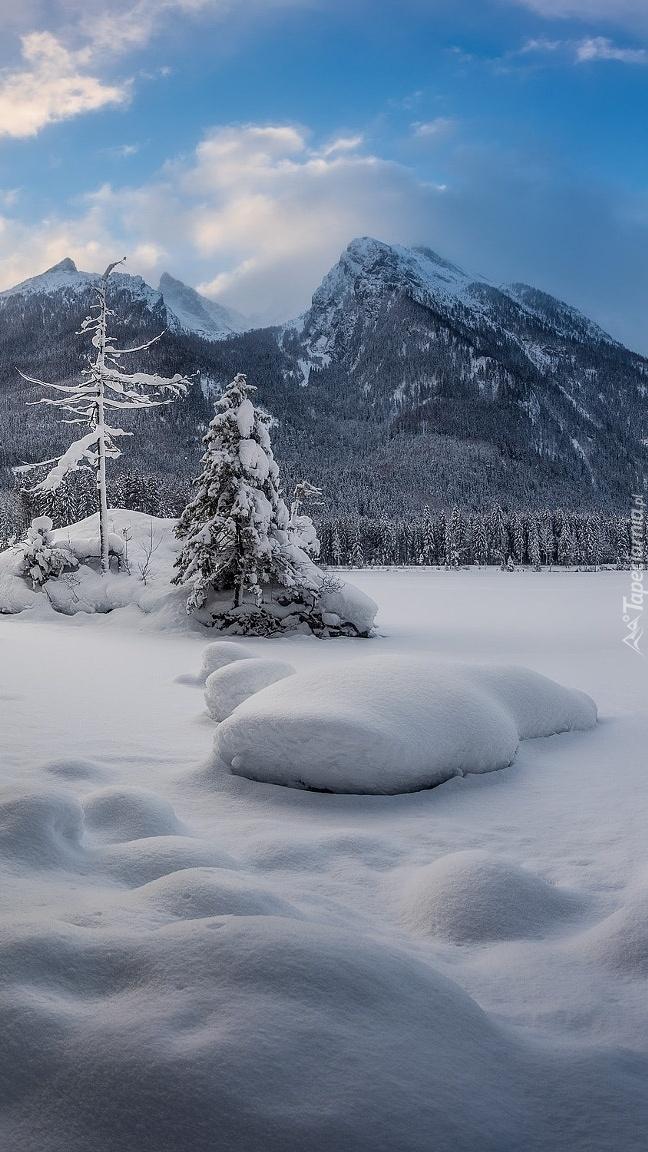 Zaśnieżone jezioro Hintersee w Alpach
