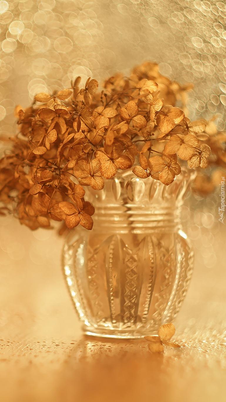Zasuszone kwiaty w wazonie
