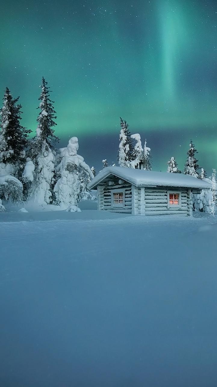 Zasypany śniegiem domek pod lasem