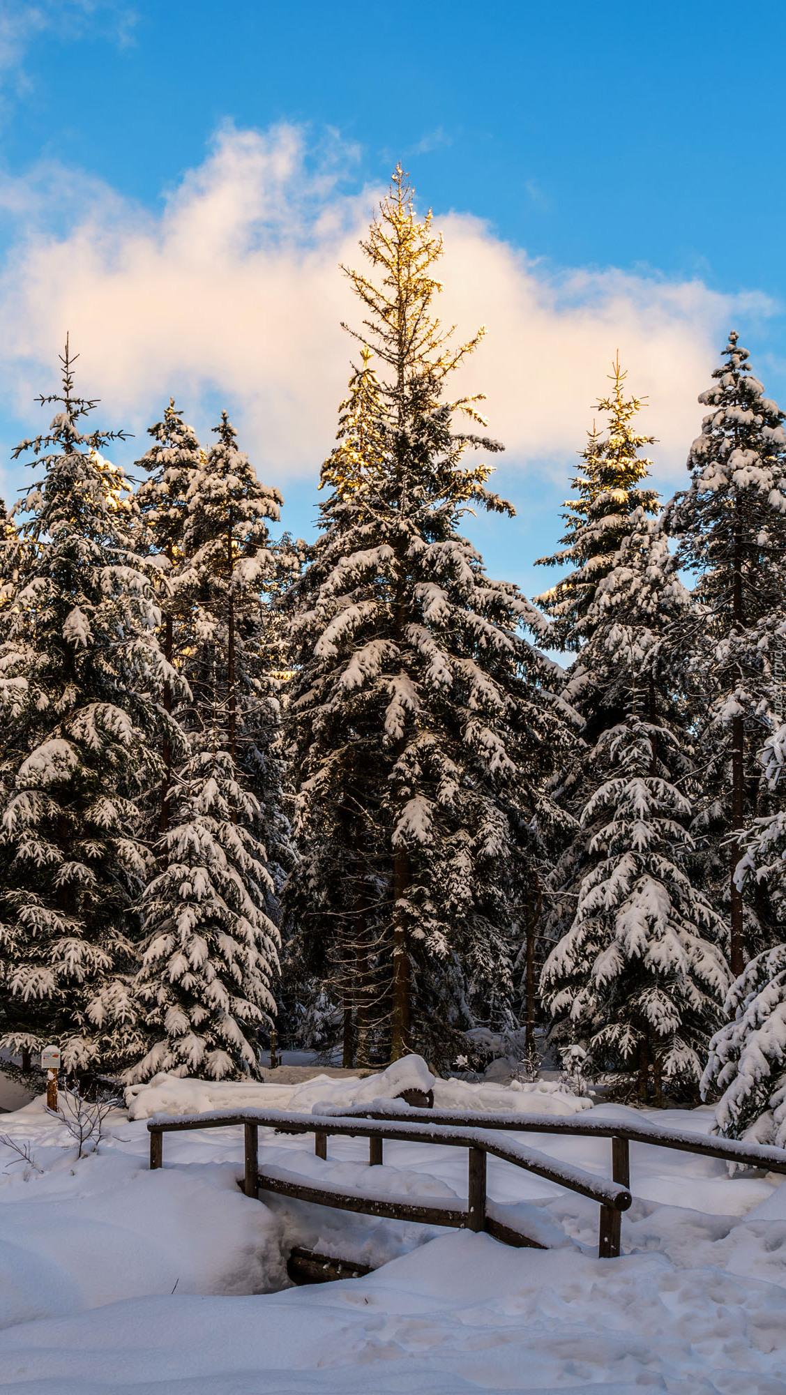 Zasypany śniegiem mostek