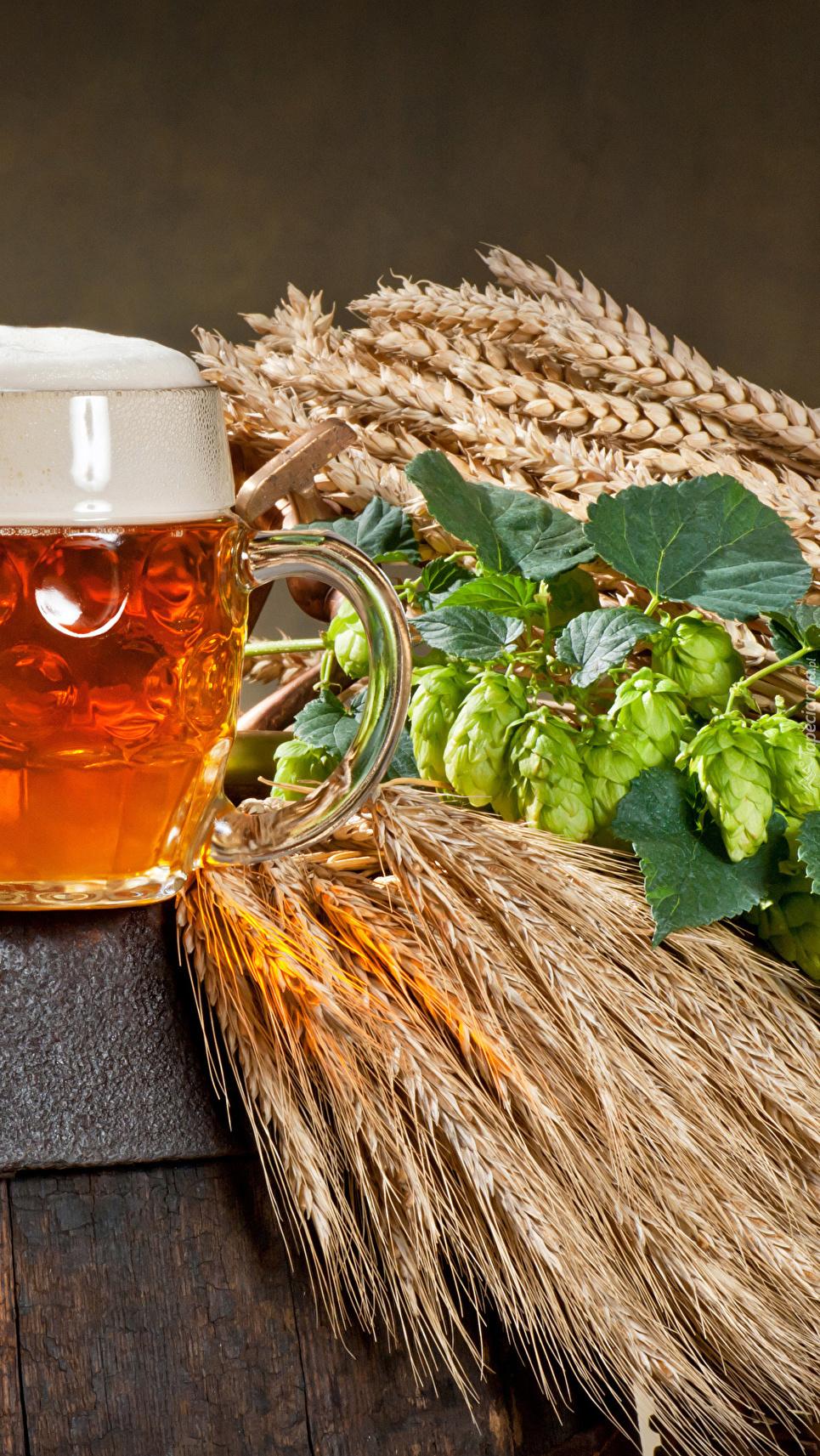 Zboże i chmiel obok kufla piwa