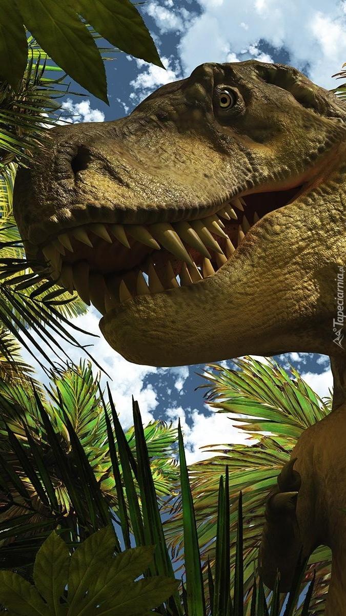 Zęby dinozaura