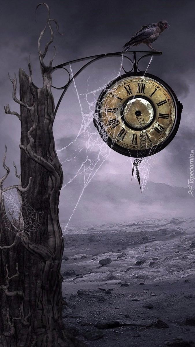 Zegar na drzewie