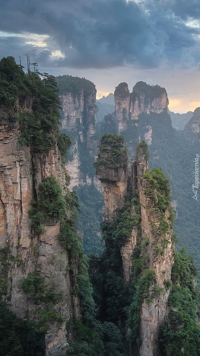 Zhangjiajie National Forest Park w Chinach