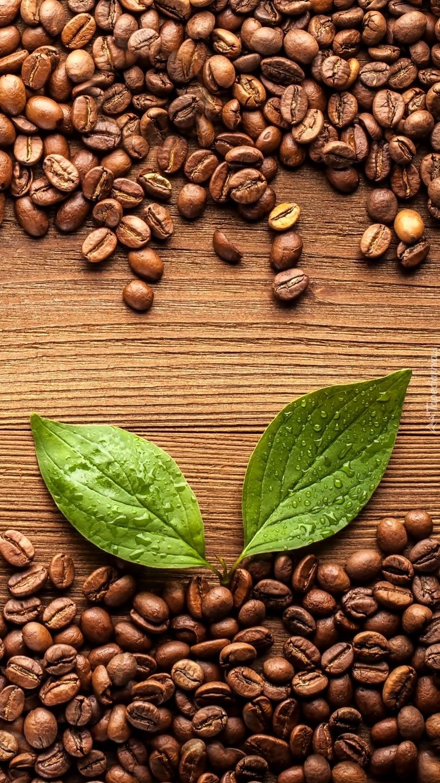 Ziarna kawy i dwa zielone listki