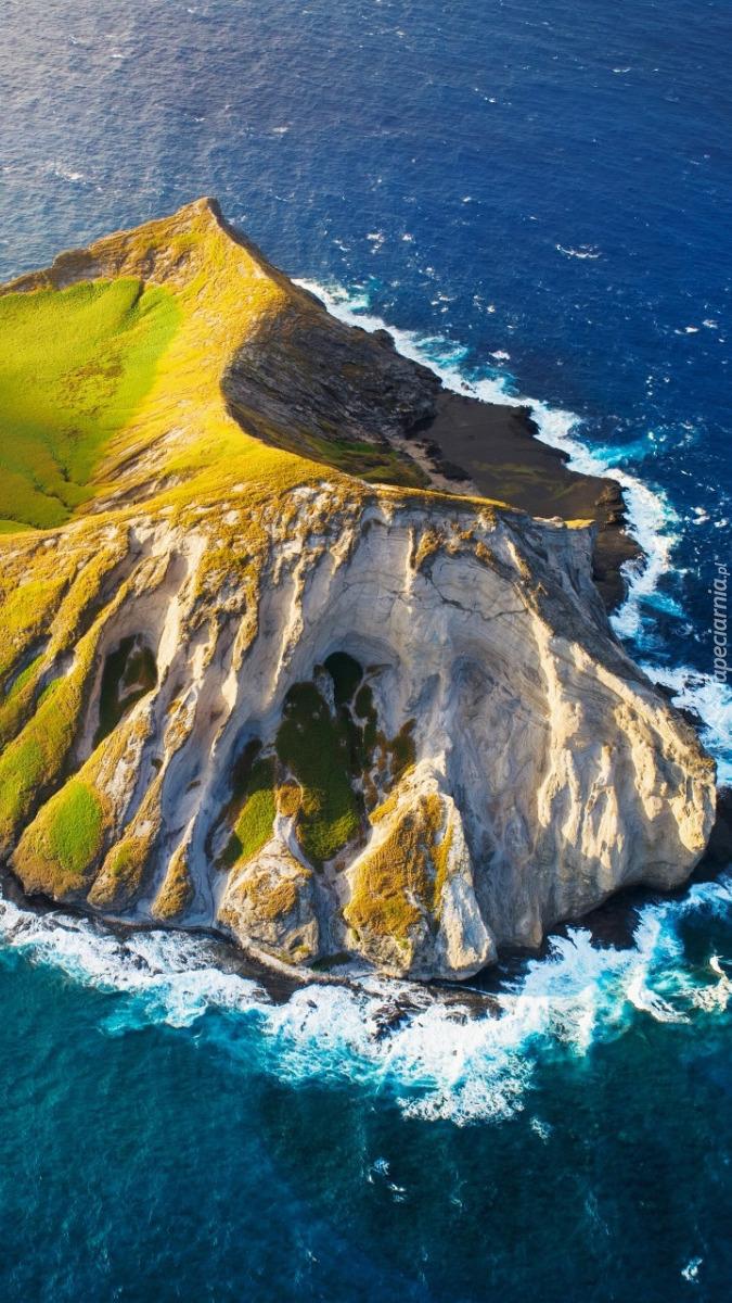 Zielona wyspa na skałach