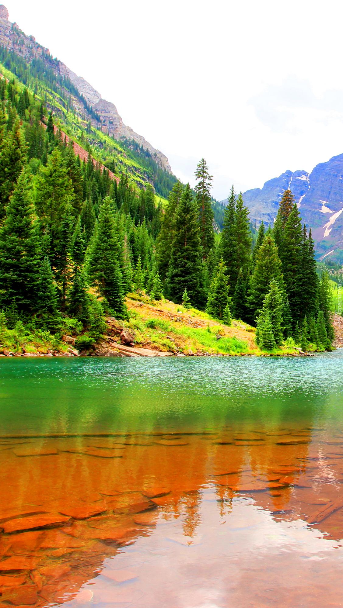 Zielone drzewa nad jeziorem Maroon Lake