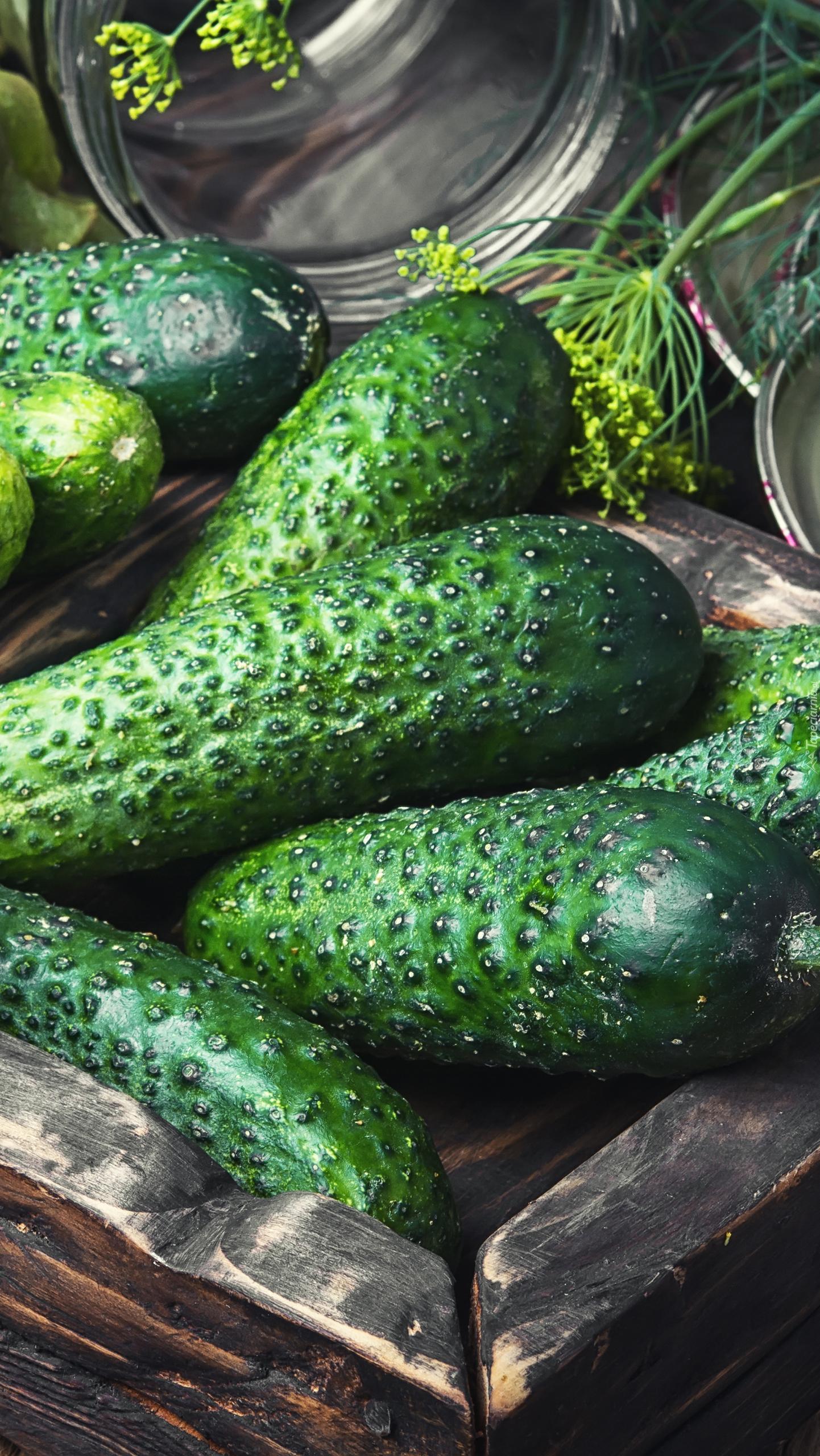 Zielone ogórki z koprem
