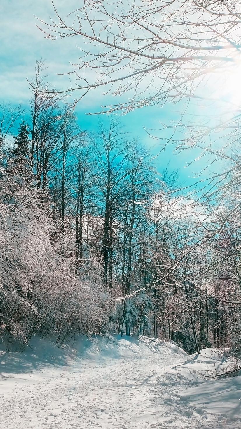 Zima ma swoje uroki