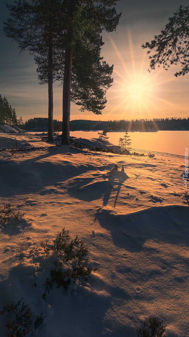 Zima nad brzegiem jeziorem w Ringerike