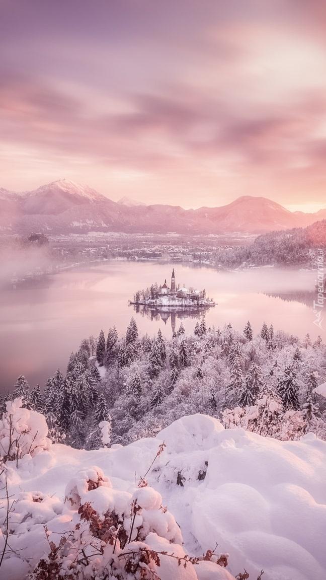 Zima nad jeziorem Bled