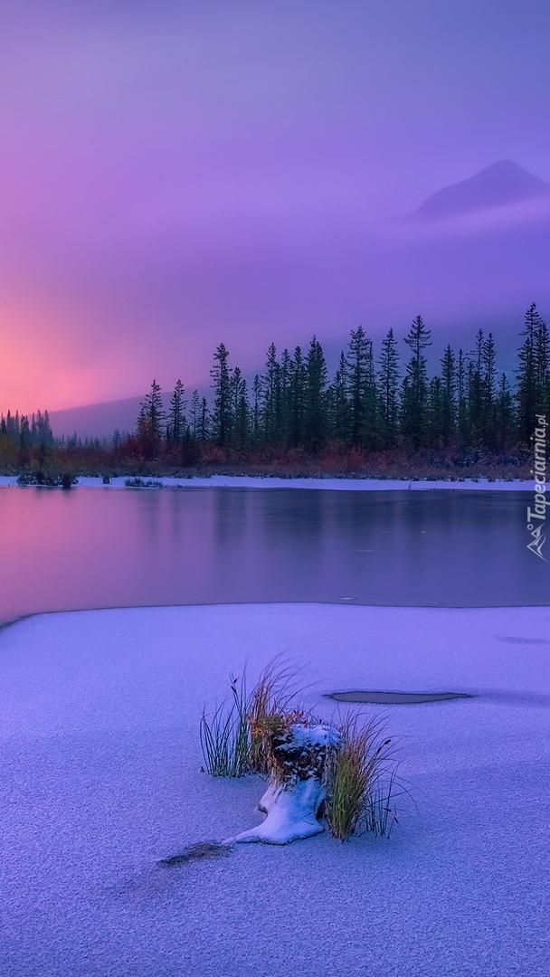 Zima nad jeziorem Vermilion Lake