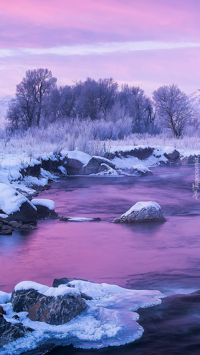 Zima nad rzeką o zachodzie słońca