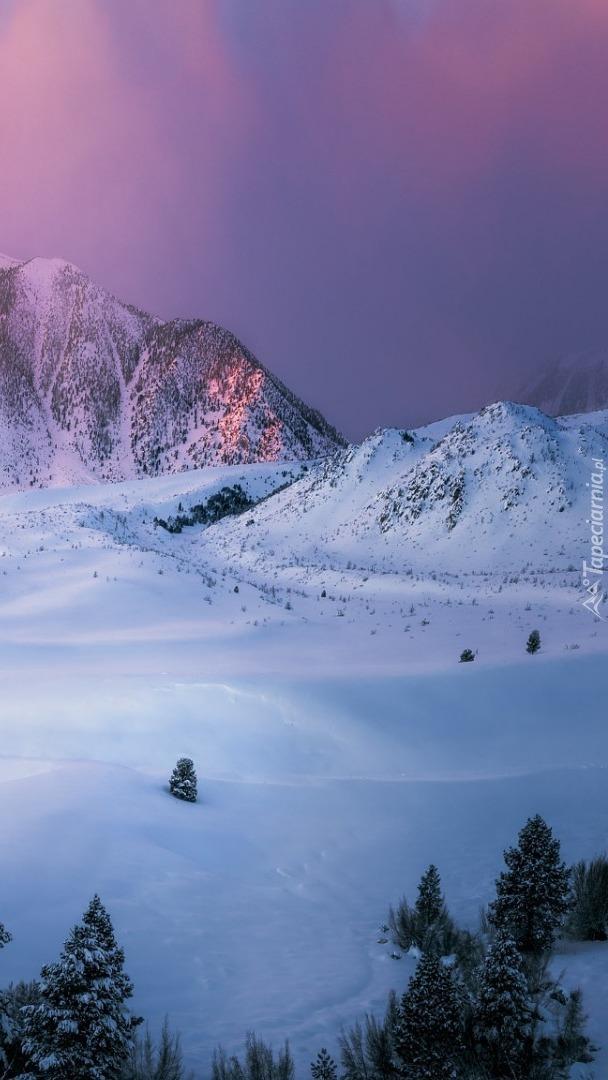 Zima w Eastern Sierra w Kalifornii