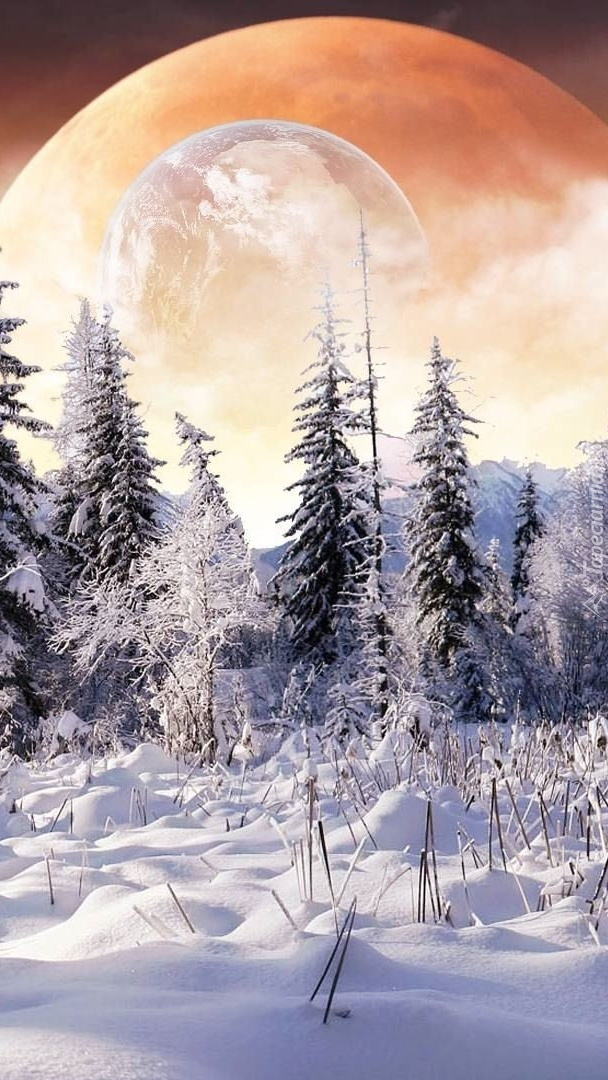 Zimowa planeta