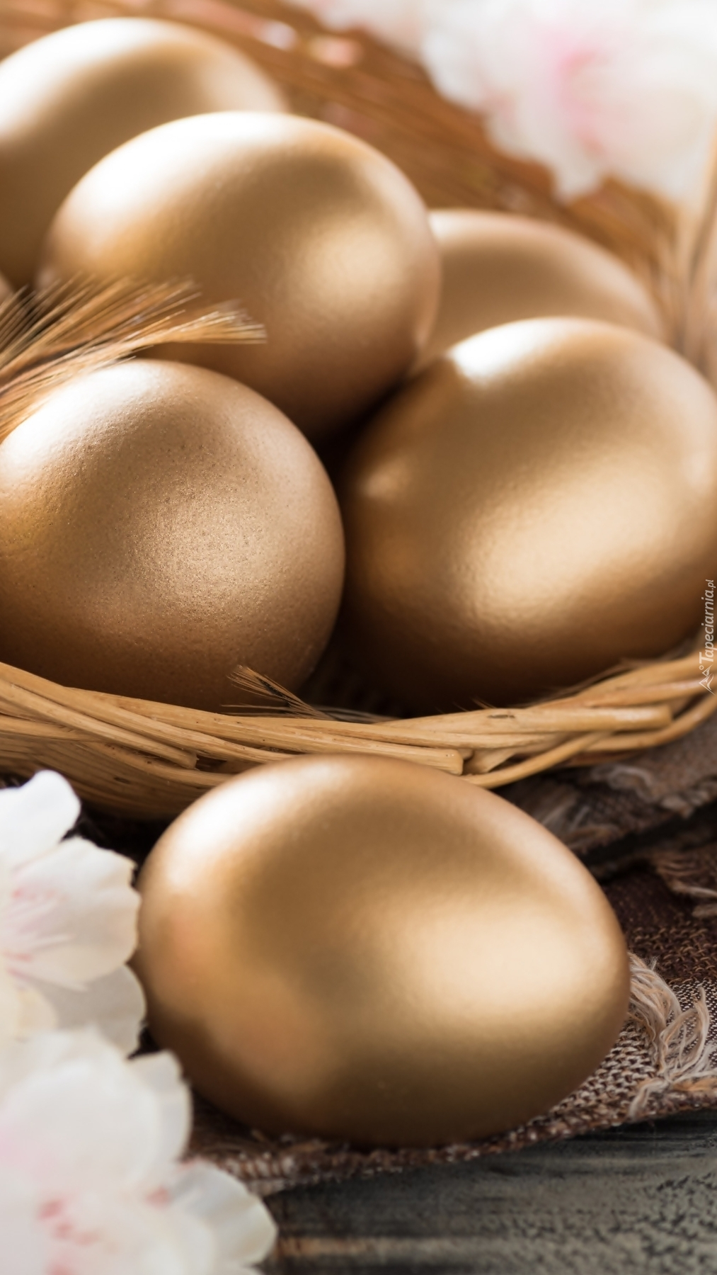 Złote jaja