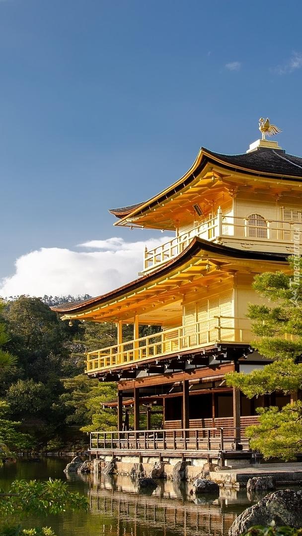 Złoty Pawilon nad stawem Kyko chi