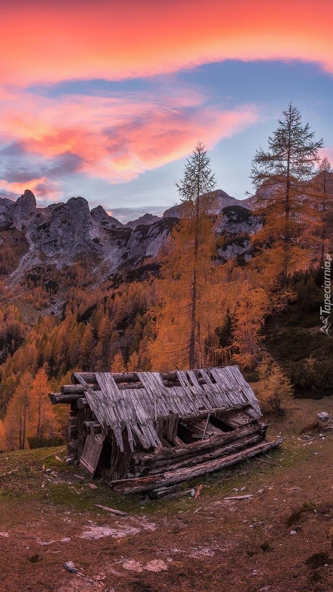 Zniszczona szopa w górach